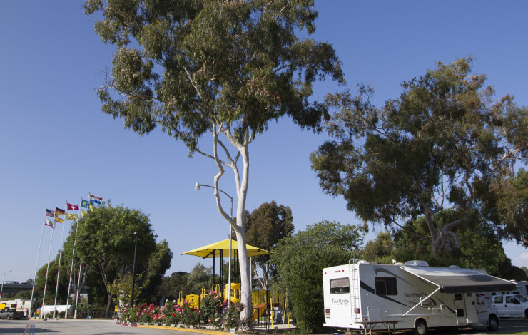 Glamping at the KOA San Diego: Making Memories as a Family!